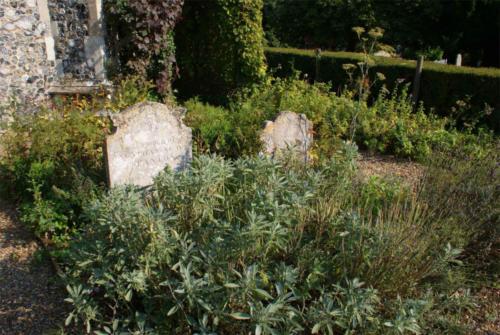 St Lawrence Centre Sacristan Garden