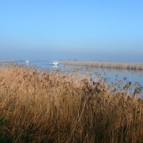 The Norfolk Broads on a misty morning